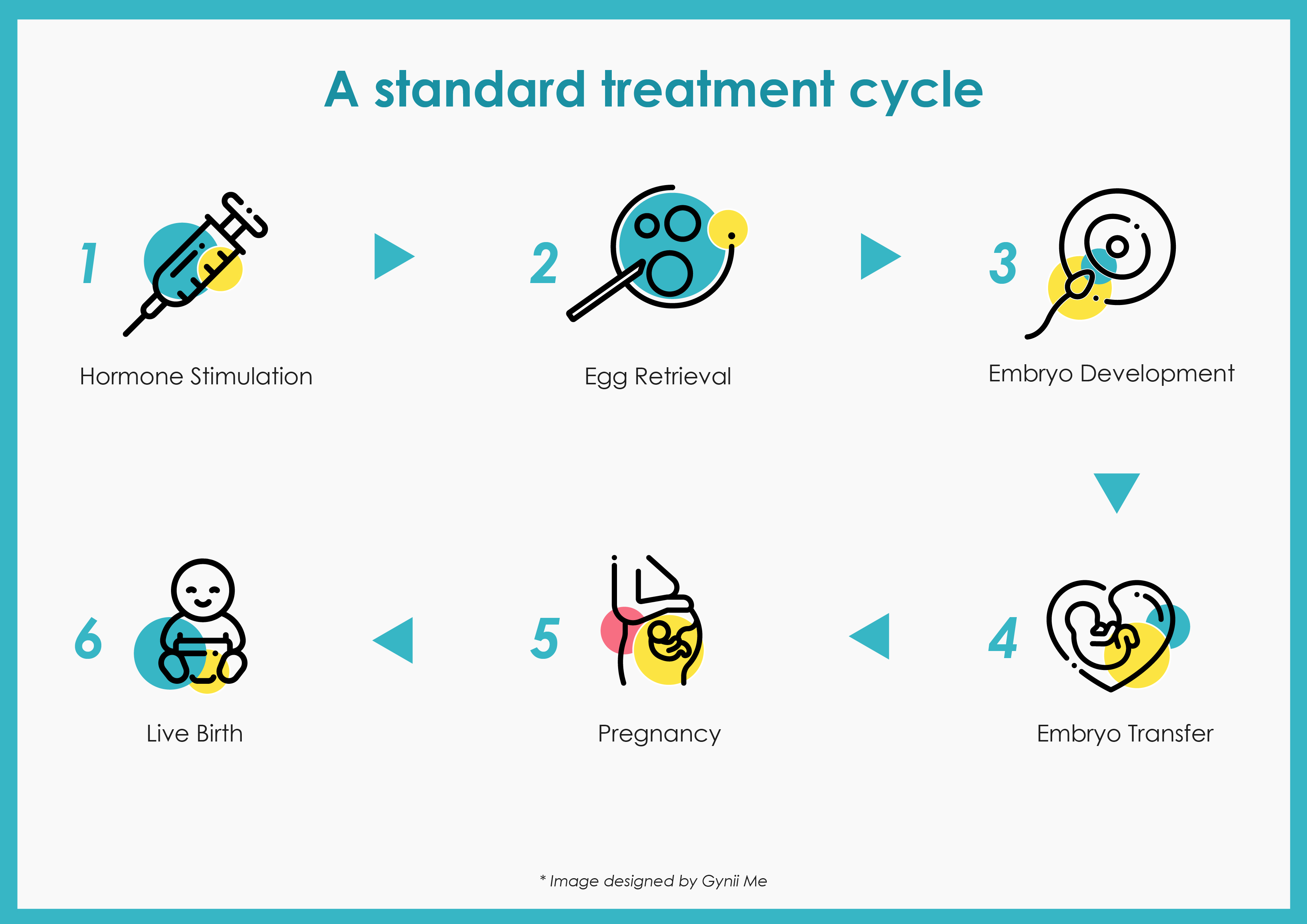 A standard IVF treatment cycle